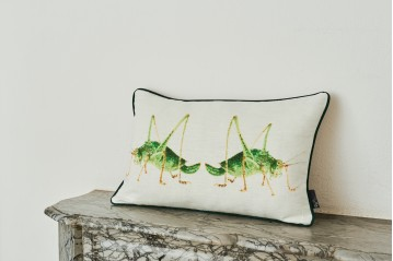 Cushion Fate Grasshoppers